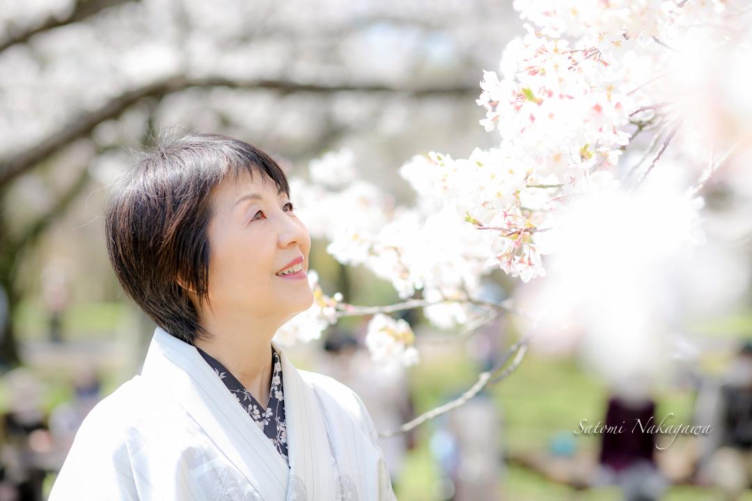 桜の花と着物の女性