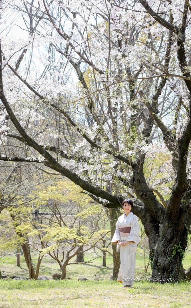 木と着物の女性